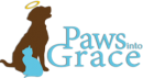 Paws Into Grace